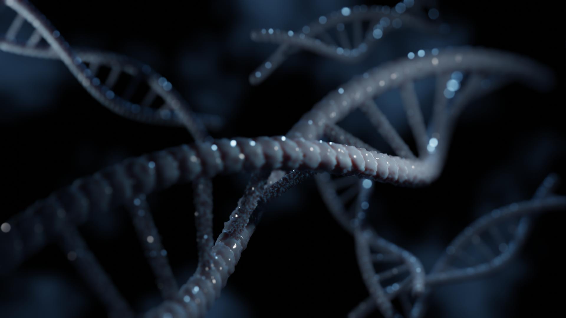 DNA Tutorial in Blender 2.8
